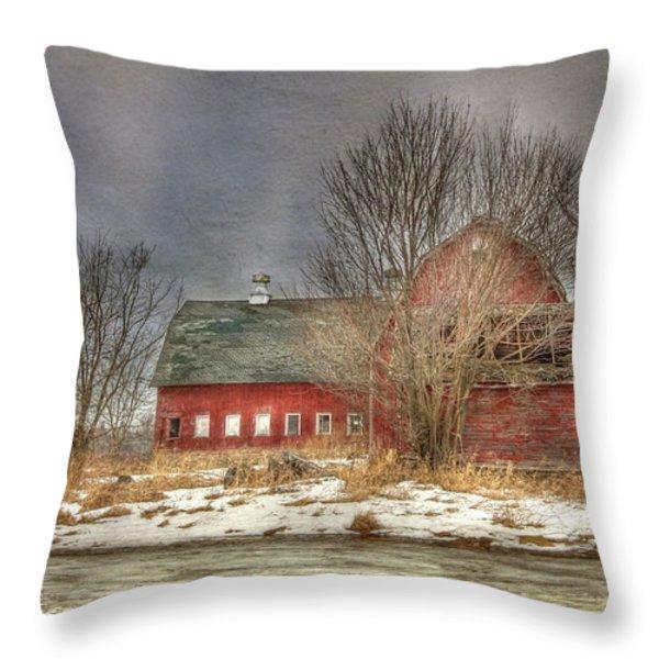 Through the Roof Throw Pillow by Lori Deiter