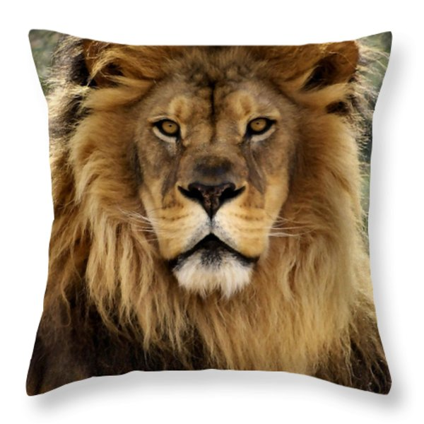 Thy Kingdom Come Throw Pillow by Linda Mishler
