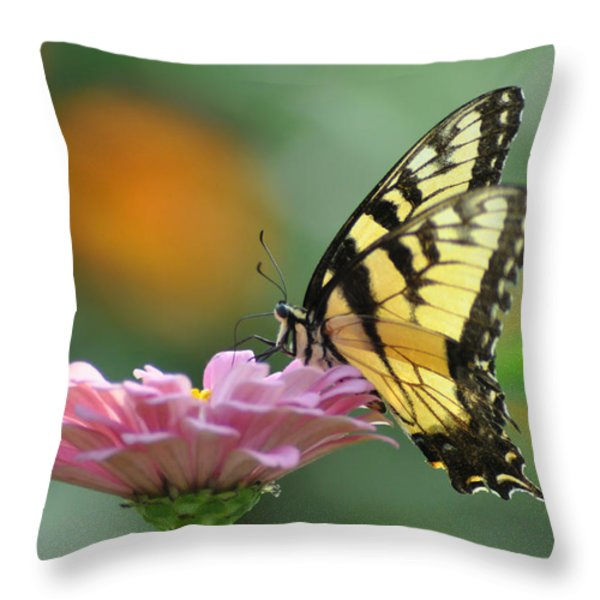 Tiger Swallowtail Butterfly Throw Pillow by Bill Cannon