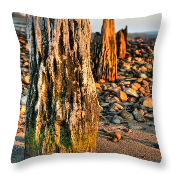 Time Stands Still Throw Pillow by Andrew Crispi