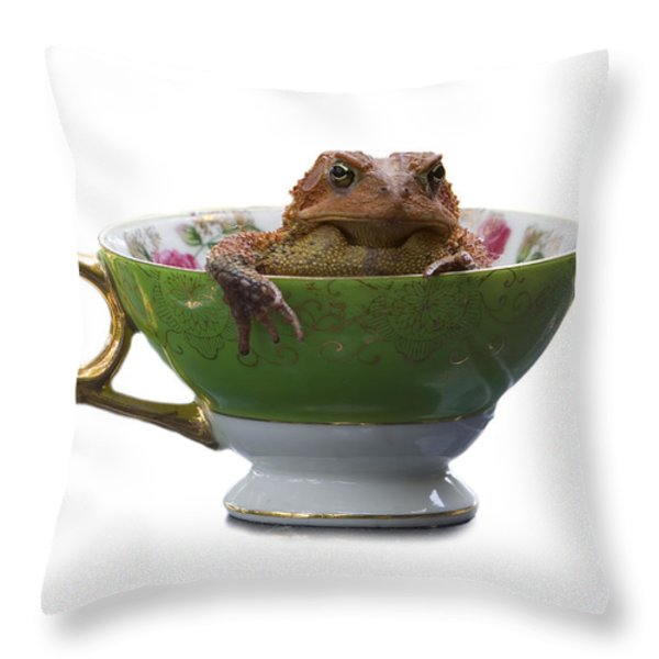 Toad In A Teacup Throw Pillow by Ron Jones