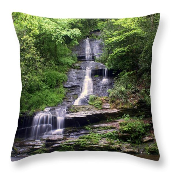 Tom Branch Falls Throw Pillow by Marty Koch