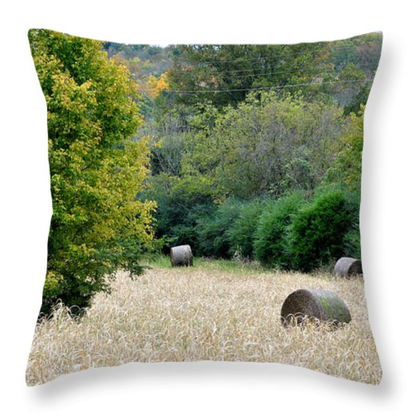 Tomorrow Never Knows Throw Pillow by Jan Amiss Photography