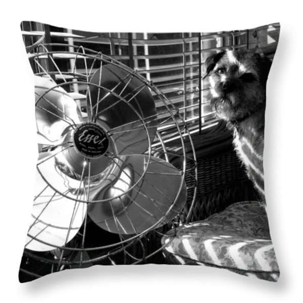 Toto Checks In Throw Pillow by Charles Stuart