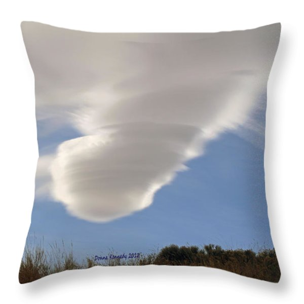 Touchdown Throw Pillow by Donna Kennedy