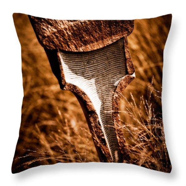 Transformation Throw Pillow by Venetta Archer