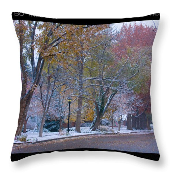 Transitions Autumn to Winter Snow Poster Throw Pillow by James BO  Insogna