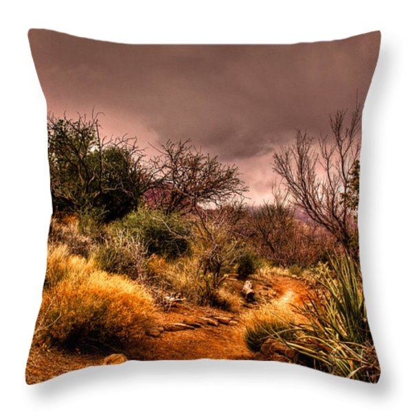 Traveling The Trail At Red Rocks Canyon Throw Pillow by David Patterson