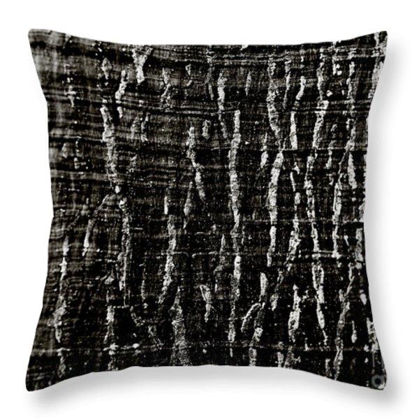 Tree Bark Throw Pillow by Charmian Vistaunet