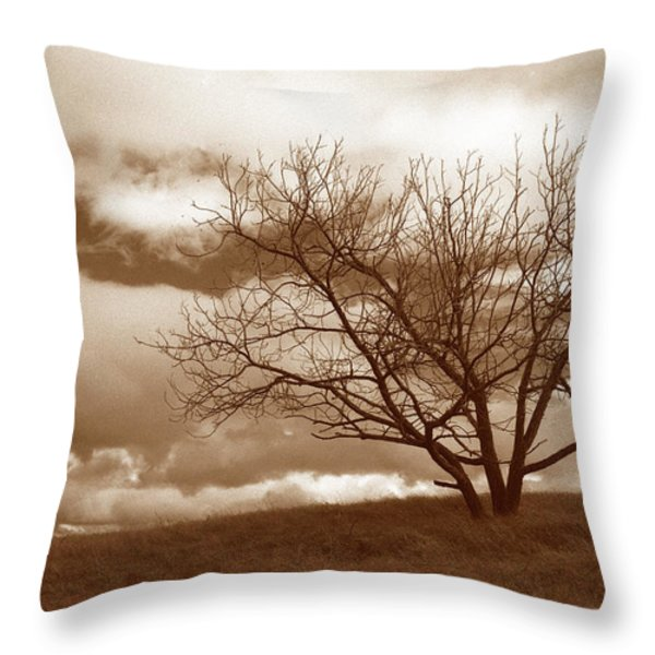 Tree In Storm Throw Pillow by Kathy Yates