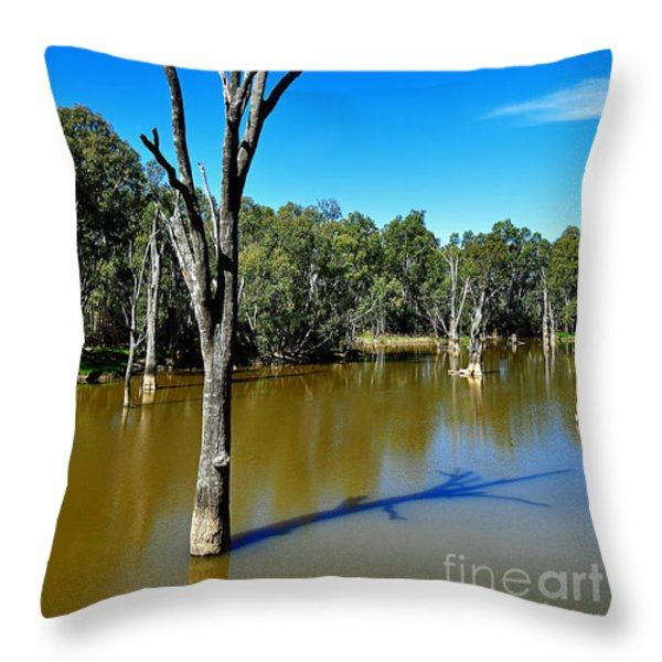 Tree Stumps In Beauty Throw Pillow by Kaye Menner