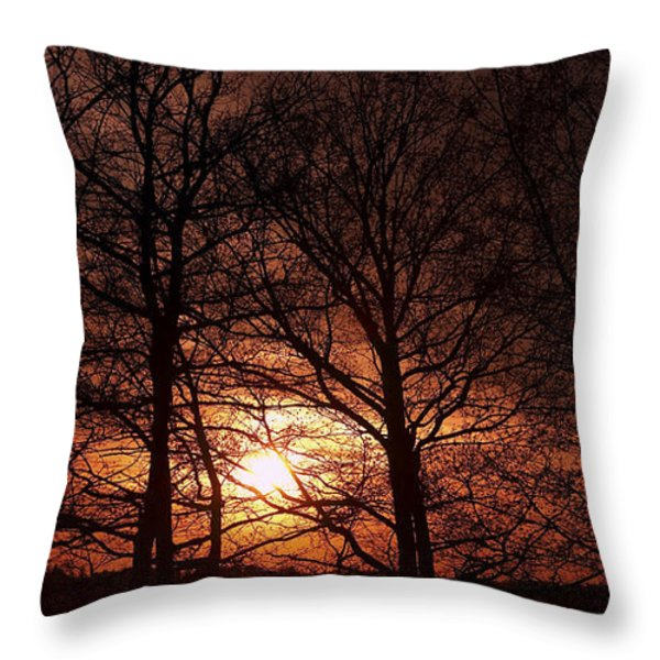 Trees At Sunset Throw Pillow by Michal Boubin