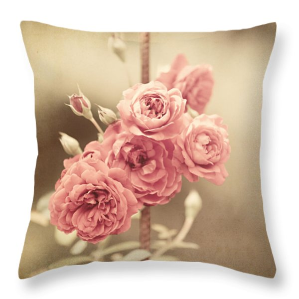 Trellis Roses Throw Pillow by Lisa Russo