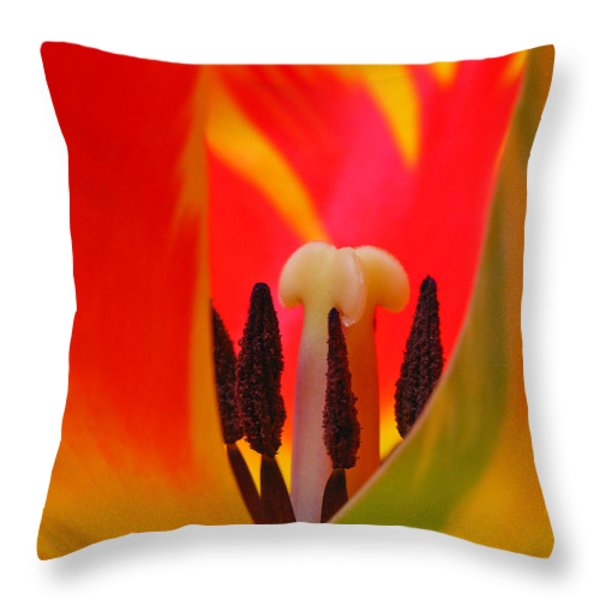 Tulip Intimate Throw Pillow by Juergen Roth