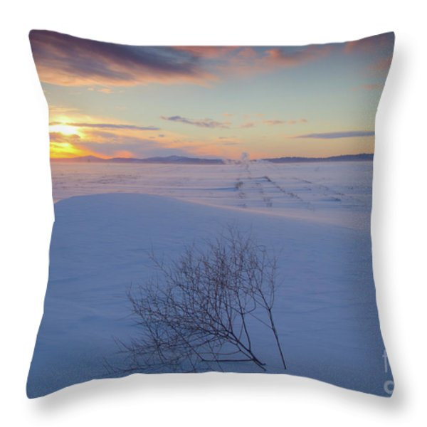 Tumble in the Snow Throw Pillow by Idaho Scenic Images Linda Lantzy