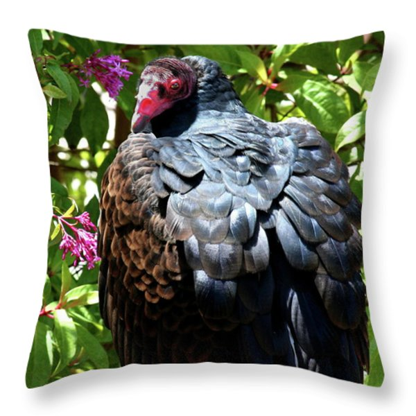 Turkey Vulture Portrait . R6805 Throw Pillow by Wingsdomain Art and Photography
