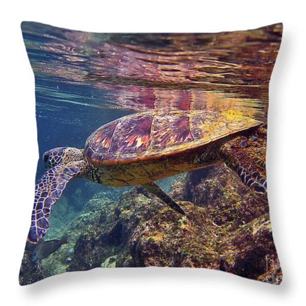 Turtle Reflections Throw Pillow by Bette Phelan