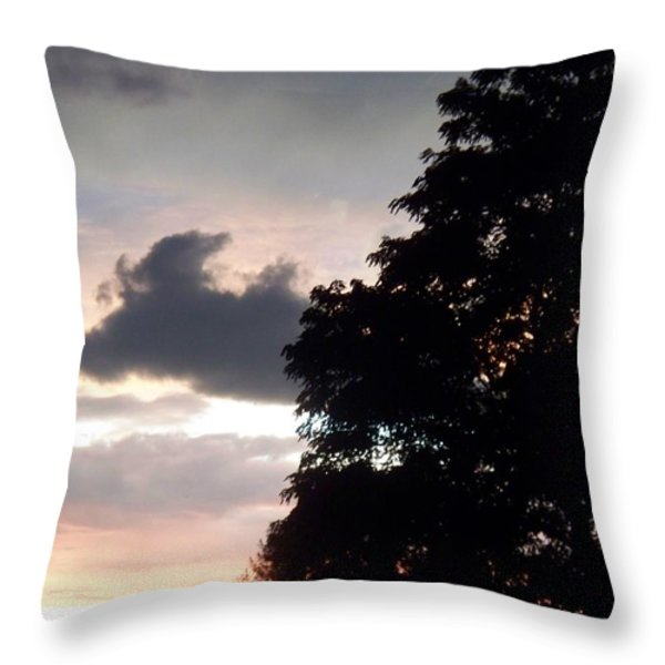 Twilight Landscape Throw Pillow by Eric  Schiabor