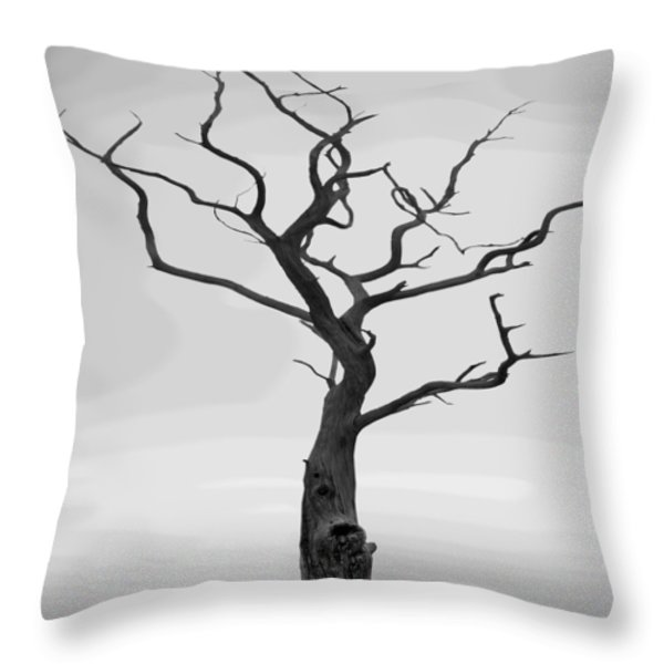 Twisted Throw Pillow by Mike McGlothlen