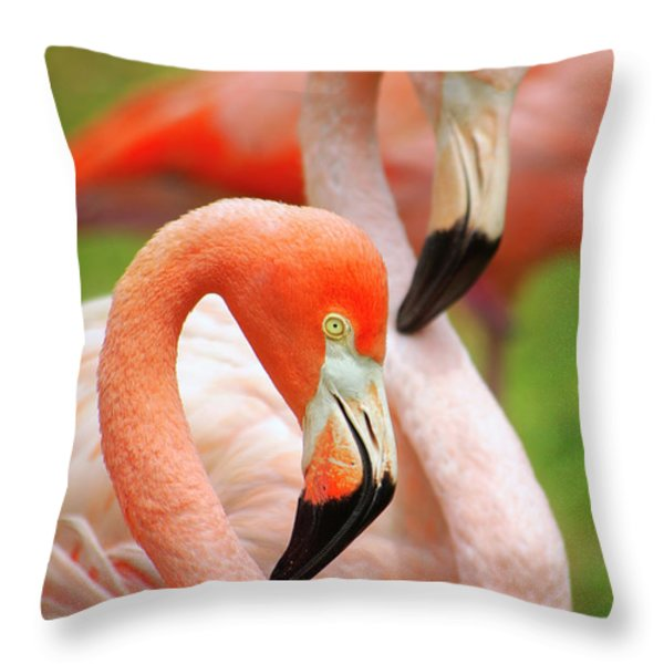 Two Flamingoes Throw Pillow by Carlos Caetano