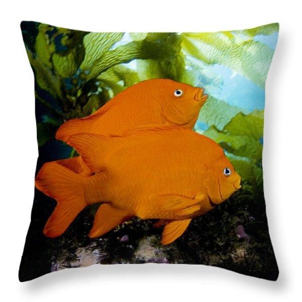 Two Garibaldi Throw Pillow by Dave Fleetham - Printscapes