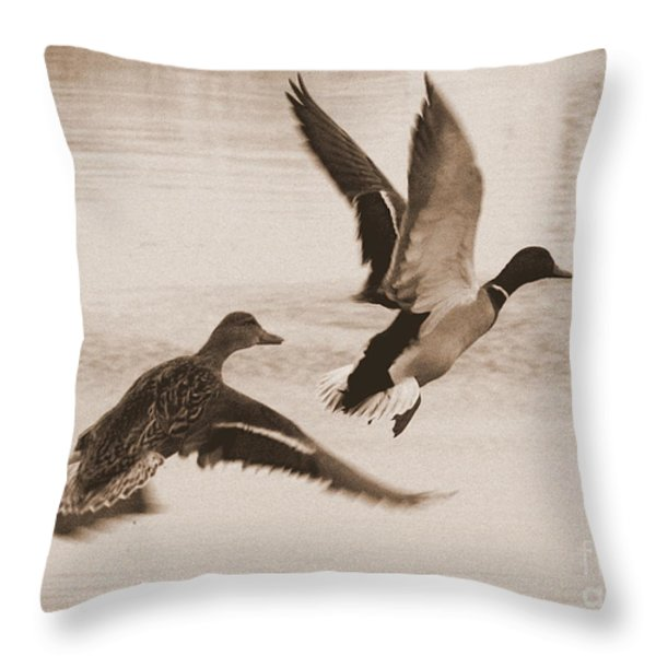 Two Winter Ducks in Flight Throw Pillow by Carol Groenen