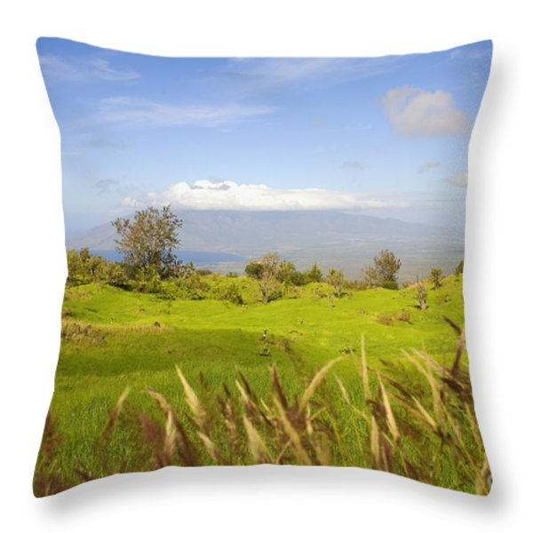 Ulupalakua Landscape Throw Pillow by Ron Dahlquist - Printscapes