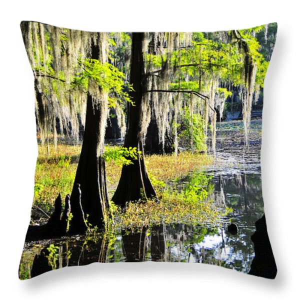 Uncertain Throw Pillow by Skip Hunt
