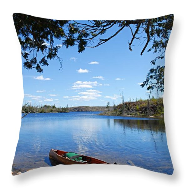Under the Cedars Throw Pillow by Larry Ricker