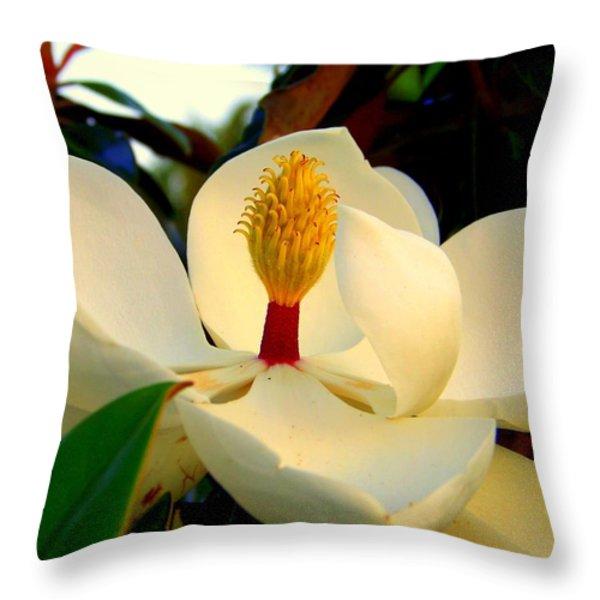 Unfolding Beauty Throw Pillow by KAREN WILES