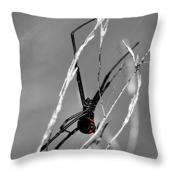 Unmistakable  Throw Pillow by JC Findley