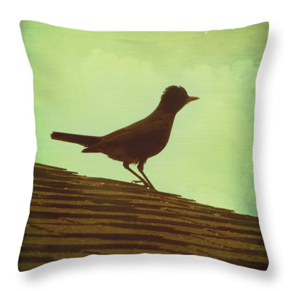 Up On A Roof Throw Pillow by Amy Tyler