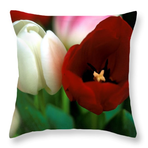 Valentine Tulips Throw Pillow by Kathy Yates
