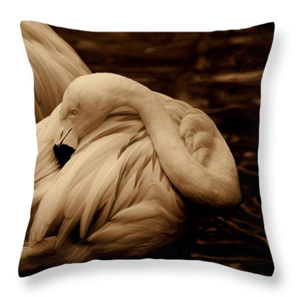 Vanity II Throw Pillow by Susanne Van Hulst