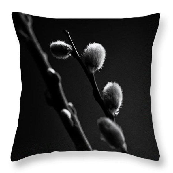 Vernal Awakening Throw Pillow by Susan Capuano