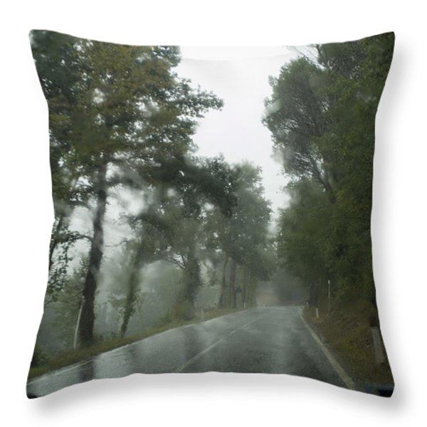 View Through The Window Of A Car Throw Pillow by Todd Gipstein