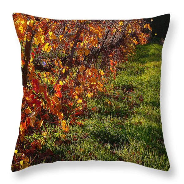 Vineyard 13 Throw Pillow by Xueling Zou