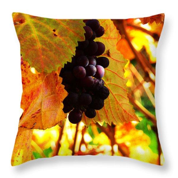 Vineyard 20 Throw Pillow by Xueling Zou