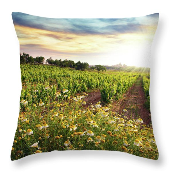Vineyard Throw Pillow by Carlos Caetano