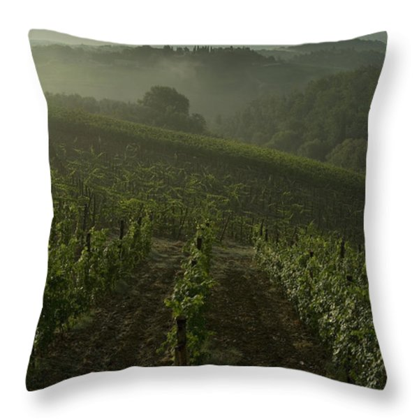 Vineyards Along The Chianti Hillside Throw Pillow by Todd Gipstein