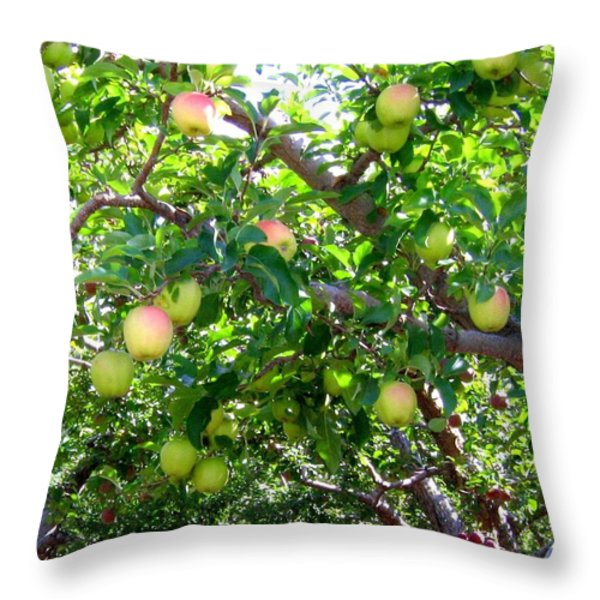 Vintage Tractor In Apple Orchard Throw Pillow by Will Borden