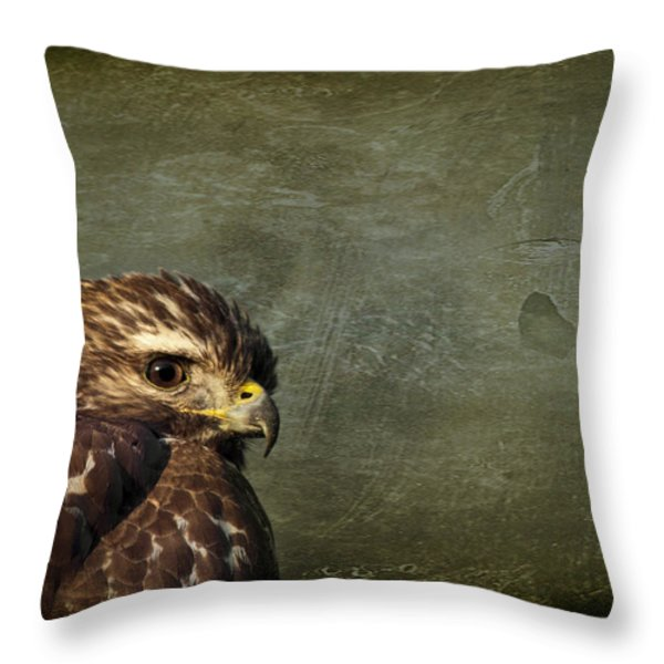 Visions of Solitude Throw Pillow by Evelina Kremsdorf