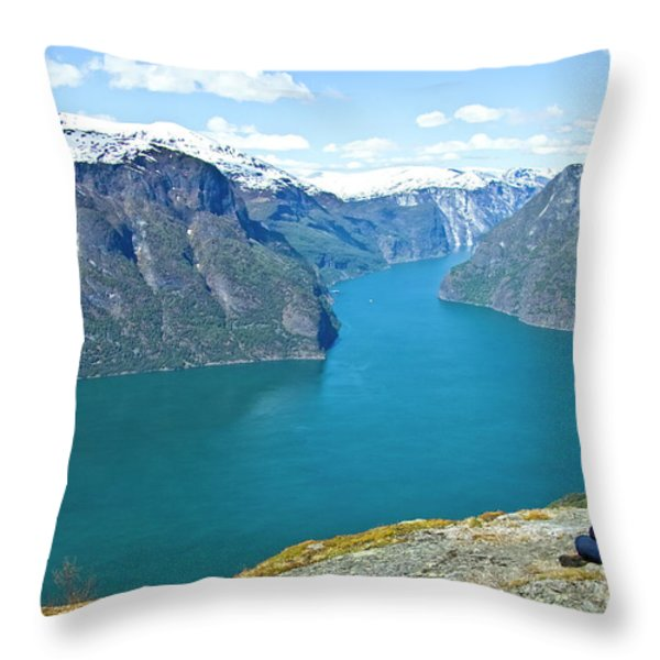 Visitor At Aurlandsfjord Throw Pillow by Heiko Koehrer-Wagner