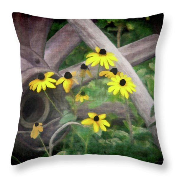 Wagon Wheel 2 Throw Pillow by Ernie Echols