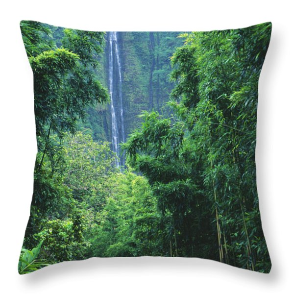 Waimoku Falls Throw Pillow by Dave Fleetham - Printscapes