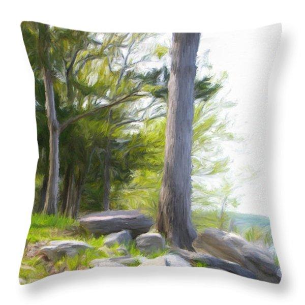 Waiting Ashore Throw Pillow by Jeff Kolker