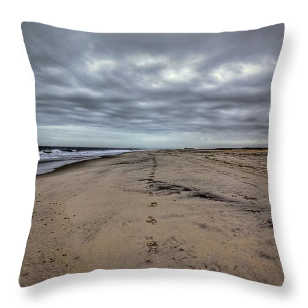 Walk The Line Throw Pillow by Evelina Kremsdorf