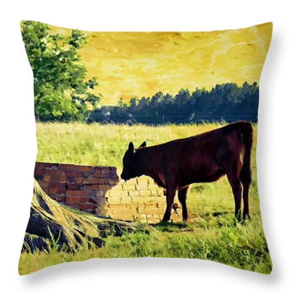 Warming Up In The Morning Glow Throw Pillow by Jan Amiss Photography