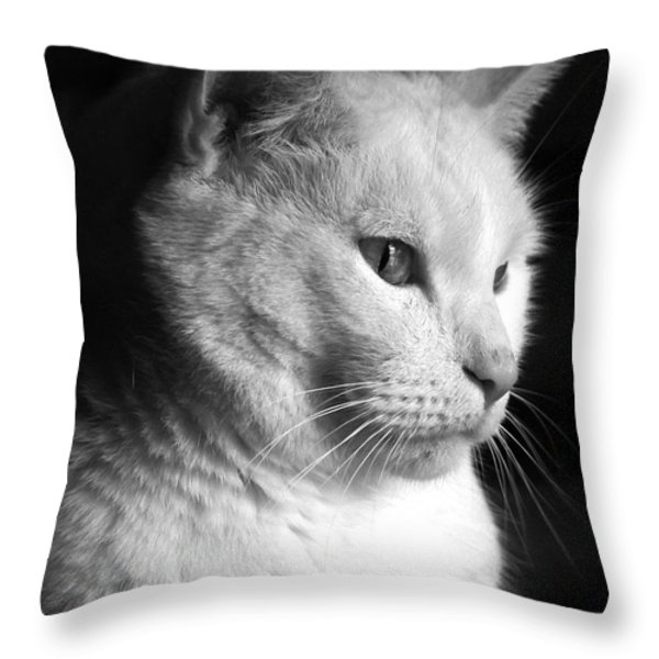 Watchful Throw Pillow by Bob Orsillo