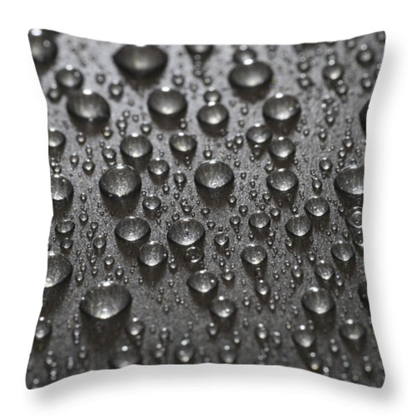 Water Drops Throw Pillow by Frank Tschakert